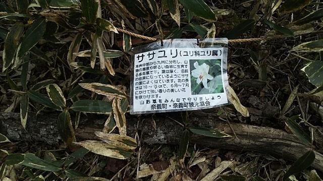 170503 那岐山~滝山㉜ ブログ用