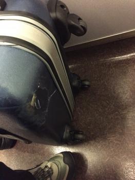 スーツケース破損