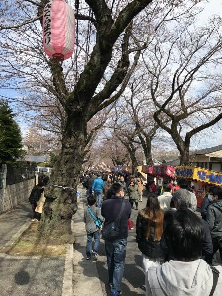 170402桜祭り