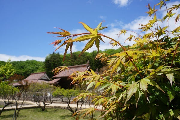 2017年4月28日に備前焼「六古窯」構成文化財日本遺産に認定された旧跡閑谷学校