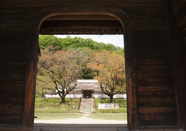 旧閑谷学校『公門』から楷の木を望む