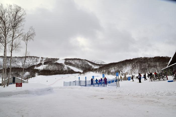 2017-01-17 坐忘林NIKON 068kuv