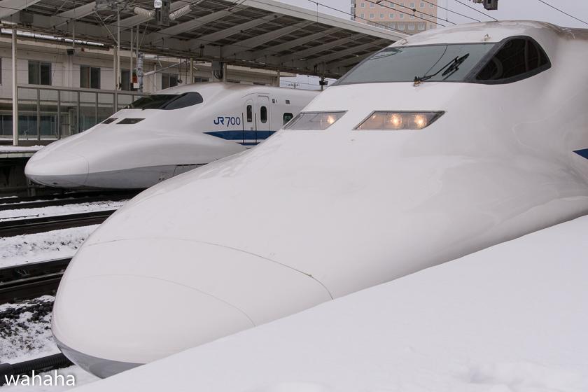 290211maibaraeki-19.jpg