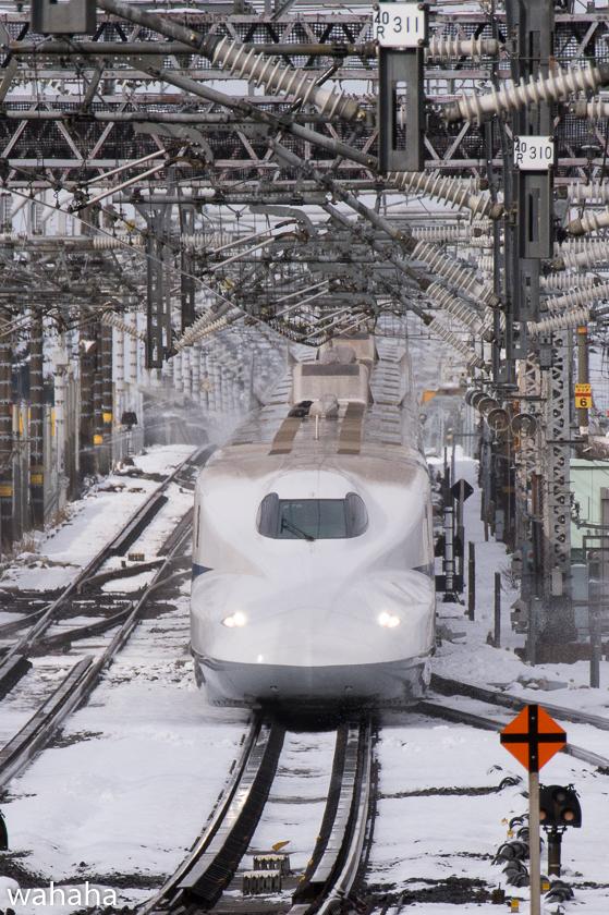 290211maibaraeki-32.jpg