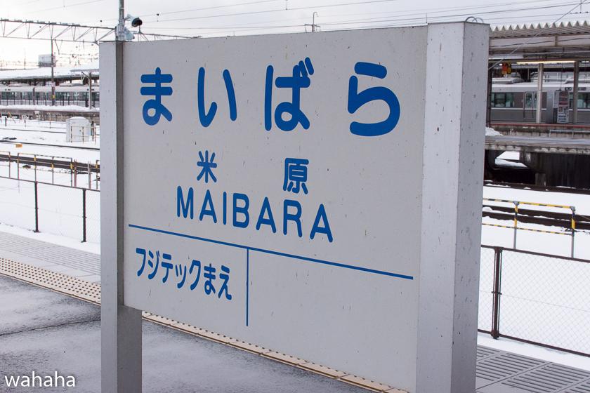 290211maibaraeki-39.jpg
