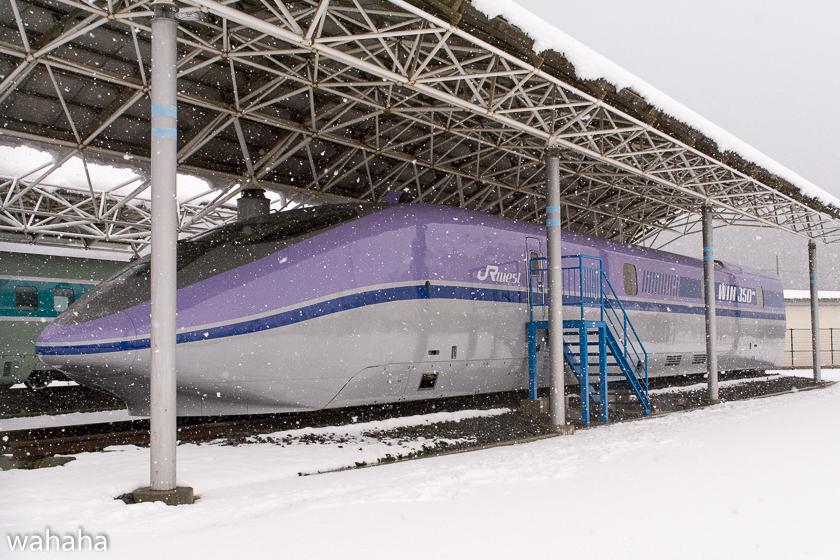 290211maibaraeki-44.jpg