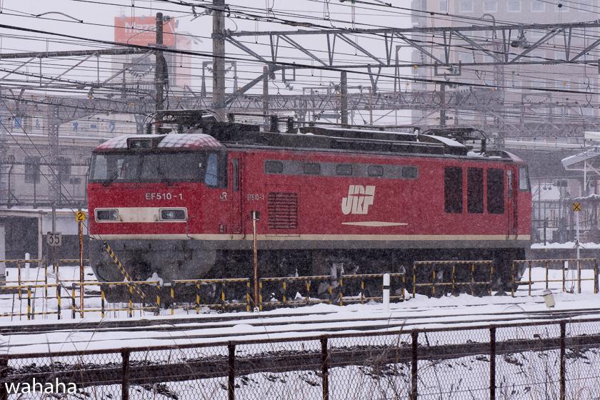 290211maibaraeki-45.jpg