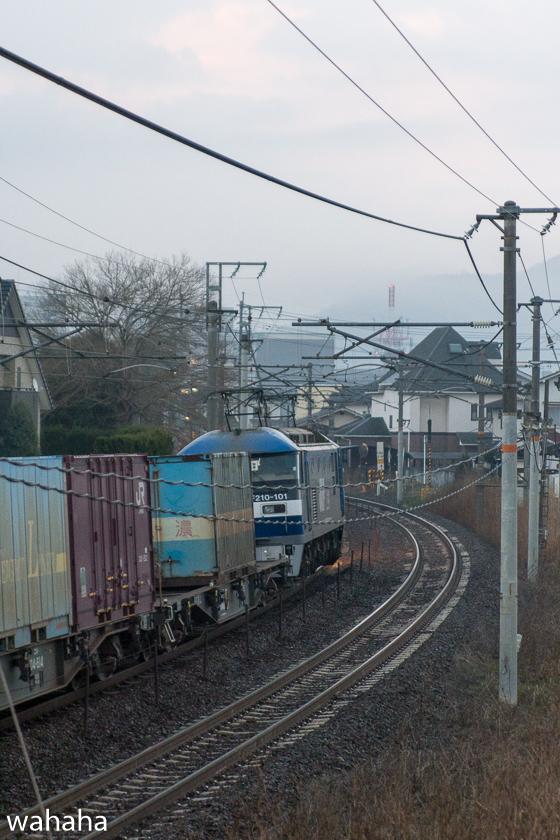 290218senohachi-21.jpg