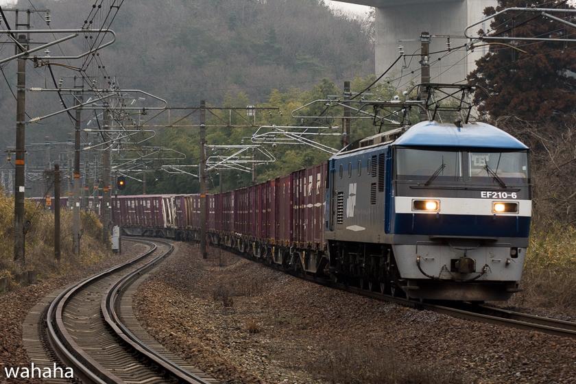 290218senohachi-43.jpg
