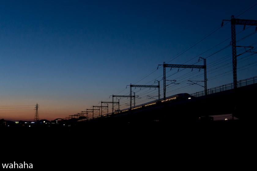 290303ichikawa-b.jpg