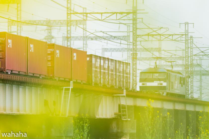 290408ichikawa1-3.jpg
