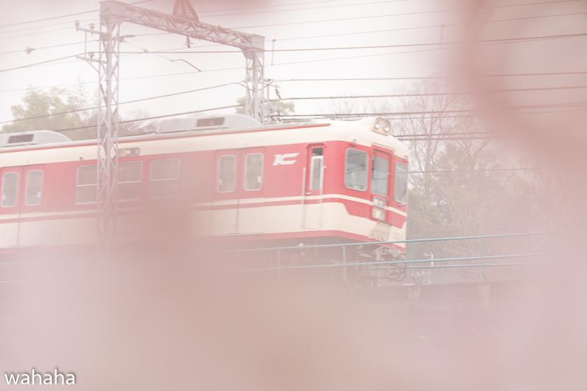 290408sintetsu_minogawa-4b.jpg
