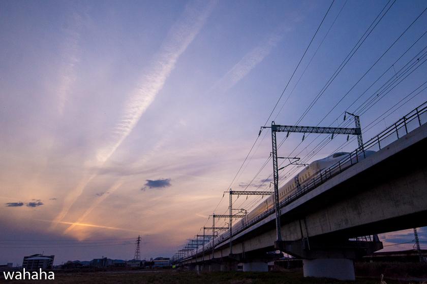 290616ichikawa-1.jpg