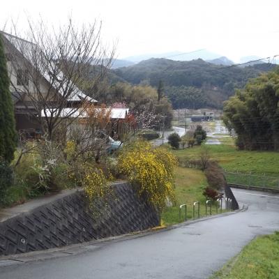 寺から見た風景