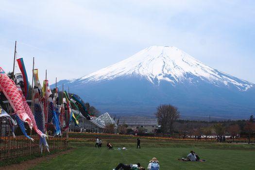こいのぼりと富士山