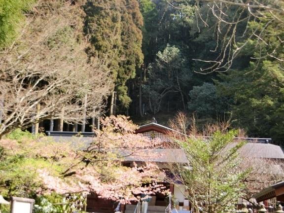 2017-02-27 fujikawa-tenjin