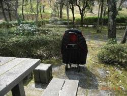 鏡山公園で散歩20170416-03