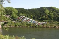 土師ダムの鯉のぼり