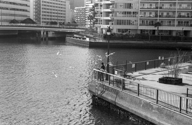 TokyoPortrait16b