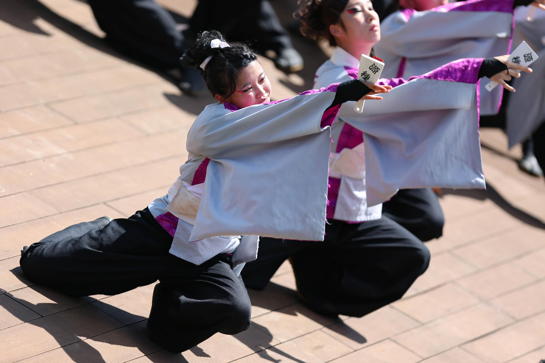 ふくしま舞祭.jpg