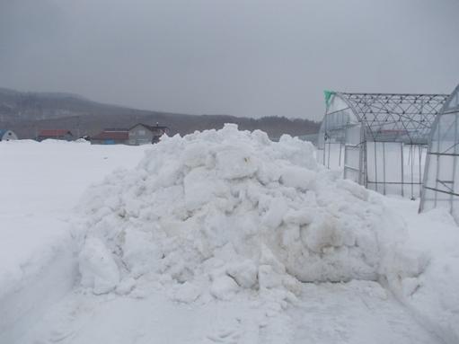 20170217_除雪した湿雪の山