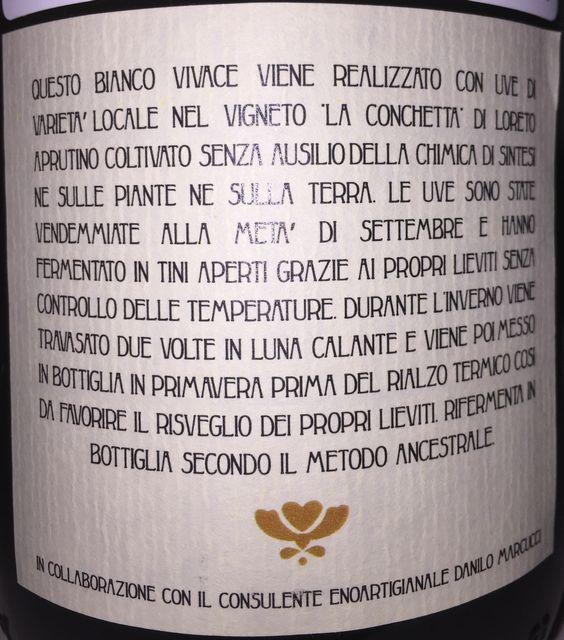 Vini Rabasco Bianco Vivace IGT Colline Pescaresi 2014 part2