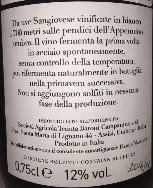 Vigneti Campanino Sur Lie Appenninico Rosato Frizzante Naturale 2013 part2