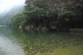 銚子川キャンプ場上流4