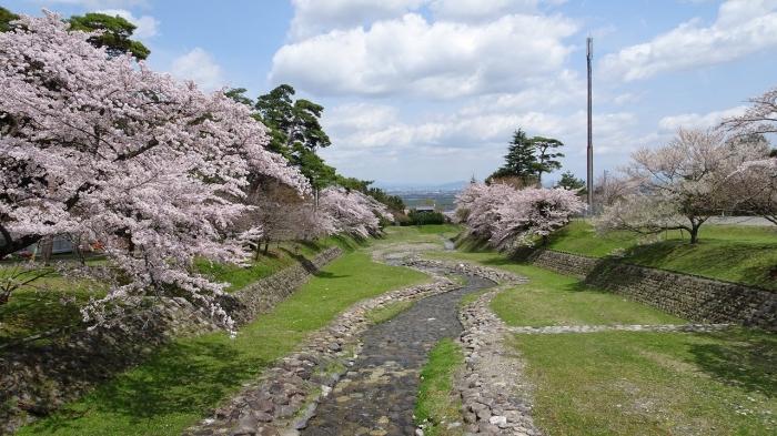 養老の滝と桜 (7)