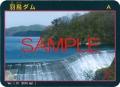 damcard101.jpg