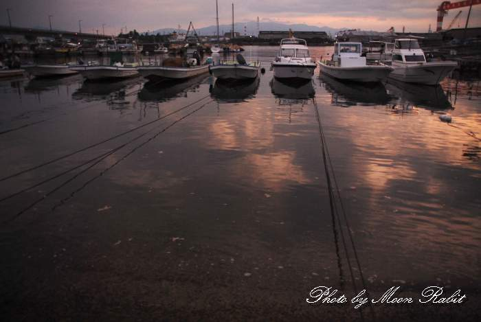 係留された漁船 玉津漁港 愛媛県西条市船屋