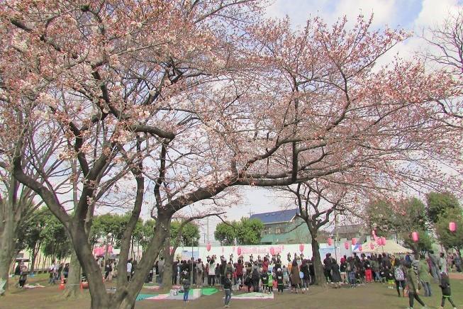 hatogaya170402-106.jpg