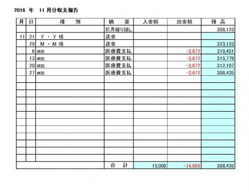 2016-11月分収支報告
