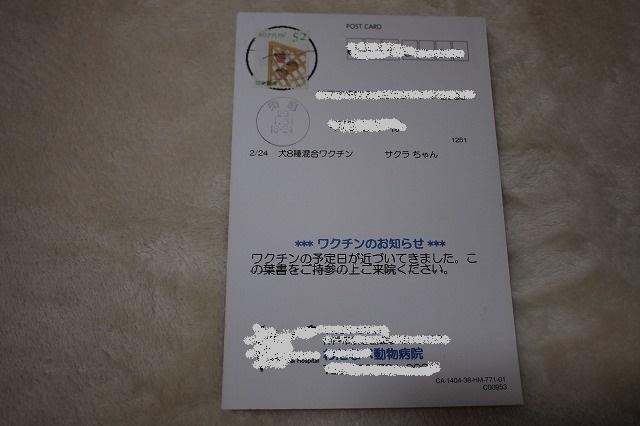 P1011522.jpg