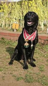 オプデス メダル 表彰