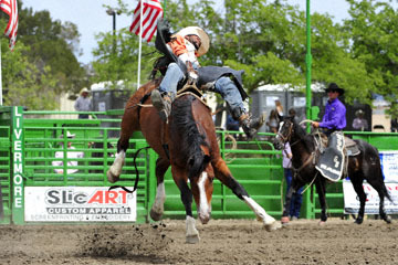 blog (6x4@300) Yoko 118 Livermore Rodeo, Bareback Bronco 4, Tre Hosley (74.5 Compton, CA) 2_DSC6975-6.11.16.(3).jpg