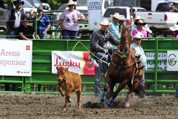 blog (6x4@300) Yoko 118 Livermore Rodeo, Tie-Down 2, Roy Branco (?) 2_DSC7056-6.11.16.(3).jpg