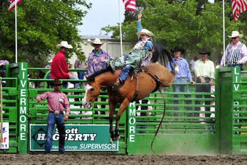 blog (6x4@300) Yoko 118 Livermore Rodeo, Bareback Bronco 6, Zack Brown (? Red Bluff, CA)_DSC7025-6.11.16.(3).jpg