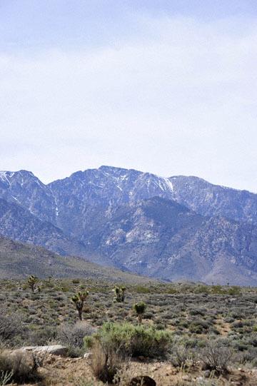 blog 12 395S near Olanch, Sage Flats Drive, Sierra Nevada Mountains, CA_DSC2570-4.6.16.(2).jpg
