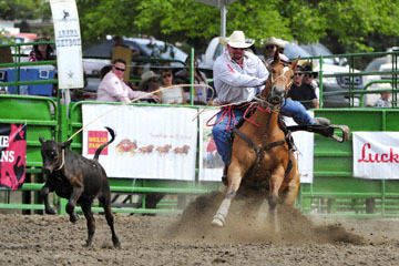blog (6x4@300) Yoko 118 Livermore Rodeo, Tie-Down 4, Kyle Lockett (12.2 Visalia, CA) 2_DSC7071-6.11.16.(3).jpg