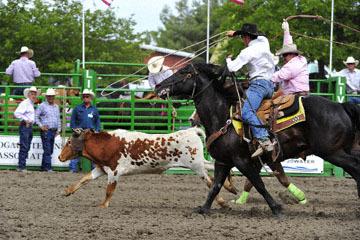 blog (6x4@300) Yoko 119 Livermore Rodeo, Local Team Roping 4, Armando Fagliano & Sean Rasmussen (NT)_DSC7154-6.11.16.(4).jpg