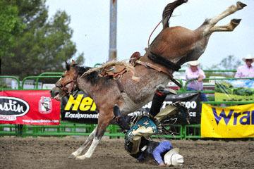 blog (6x4@300) Yoko 119 Livermore Rodeo, Saddle Bronco 3, Mason Mardesich (NS ?, Fowler, CO) 2_DSC7253-6.11.16.(4).jpg