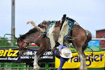 blog (6x4@300) Yoko 119 Livermore Rodeo, Saddle Bronco 3, Mason Mardesich (NS ?, Fowler, CO) 2_DSC7252-6.11.16.(4).jpg