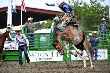 blog (6x4@300) Yoko 119 Livermore Rodeo, Saddle Bronco 3, Mason Mardesich (NS ?, Fowler, CO)_DSC7246-6.11.16.(4).jpg
