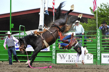 blog (6x4@300) Yoko 119 Livermore Rodeo, Saddle Bronco 2, Joaquin Real (NS Santa Paula, CA)_DSC7232-6.11.16.(4).jpg