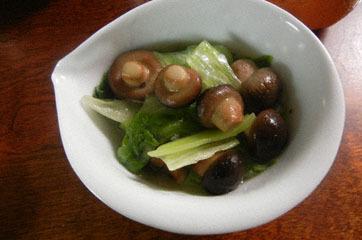 blog Lettuce & Mushroom-DSCN1092-2.17.11.jpg