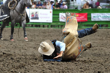 blog (6x4@300) Yoko 119 Livermore Rodeo, Saddle Bronco 6, Jacob Phillips (NS Vista, CA) 2_DSC7331-6.11.16.(4).jpg