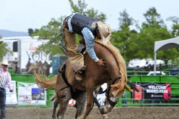 blog (6x4@300) Yoko 119 Livermore Rodeo, Saddle Bronco 6, Jacob Phillips (NS Vista, CA) 2_DSC7328-6.11.16.(4).jpg