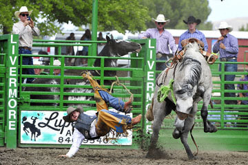 blog (6x4@300) Yoko 119 Livermore Rodeo, Saddle Bronco 5, Justin Lawrence (NS Sanger, CA) 2_DSC7300-6.11.16.(4).jpg