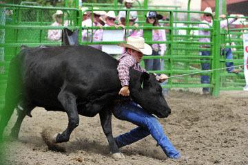 blog (6x4@300) Yoko 119 Livermore Rodeo, Wild Cow Milking 4, Lance Barsnick Jr & Dan Rechtin (NT)_DSC7368-6.11.16.(4).jpg